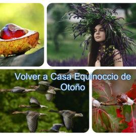 taller Online Volver a Casa en el Equinoccio de Otoño Gabriella Robles